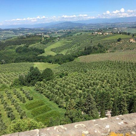 Tuscany Bike Tours: one day bike tour through the hills of Chianti Φωτογραφία
