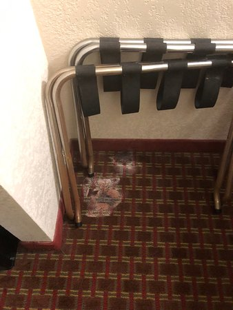 Best Western Truman Inn: Floor of room