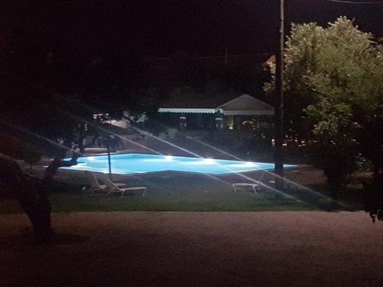 "Olive Grove Estate ""Eleas Gi"": 20180515_221109_large.jpg"