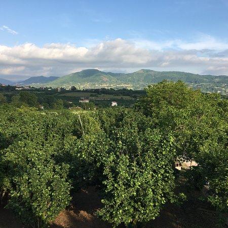 San Cipriano Picentino Villa Rizzo