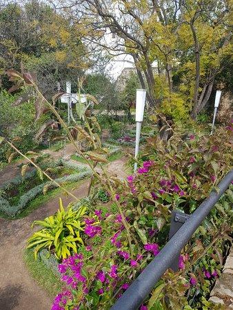 Castelo de Tavira : jardin