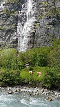 Lauterbrunnen Village: Beautiful Lauterbrunnen, so picturesque, walk and walk for miles and just admire its beauty