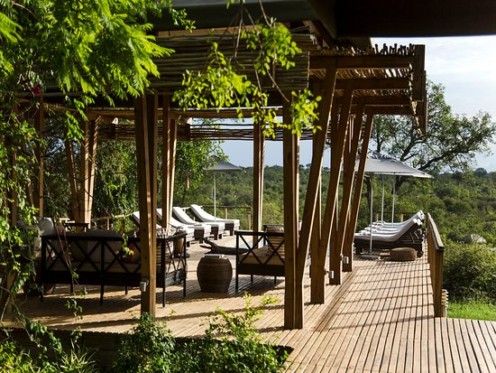 Timbavati Private Nature Reserve Photo