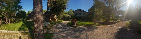 Piccione, Italy: 20180519_084540_large.jpg