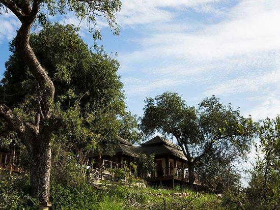 Timbavati Private Nature Reserve Image
