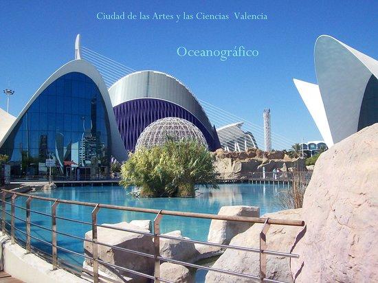 Oceanogràfic València: Oceanogràfico