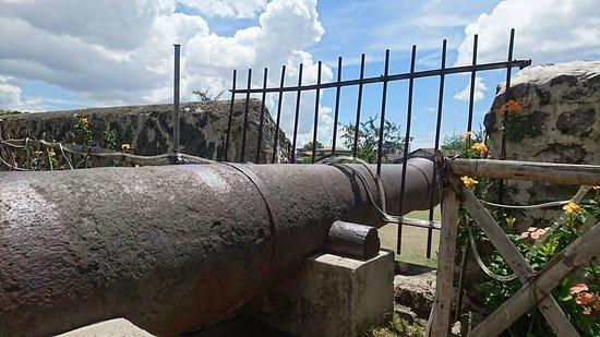 Fort San Pedro: DSC_1452_large.jpg