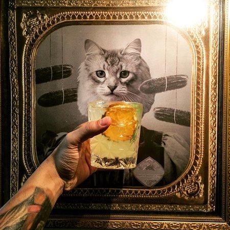 Flekk: Cocktail for Cat