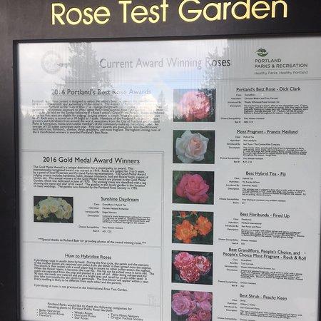 International Rose Test Garden Φωτογραφία