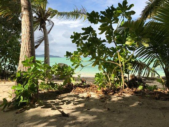 Leleuvia Island, Fiji: The beach, 10 steps out of your Bure