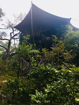 Kafue National Park Φωτογραφία