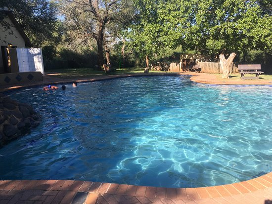 Lower Sabie Restcamp: Piscina comune.