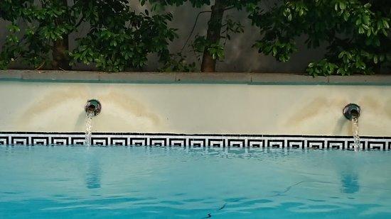 Melrose Mansion: Detalj från poolen