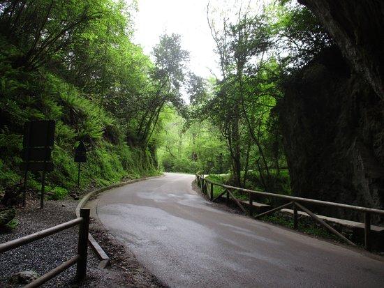 Cuevona de Cuevas del Agua: Entrada desde Ribadesella
