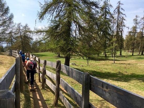 Meltina, إيطاليا: passeggiata per arrivare