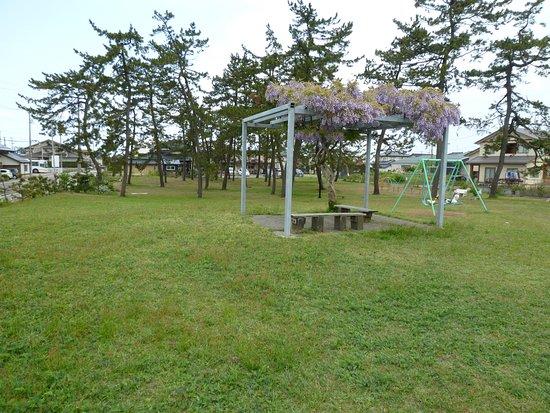 Matsunami Daiichi Park