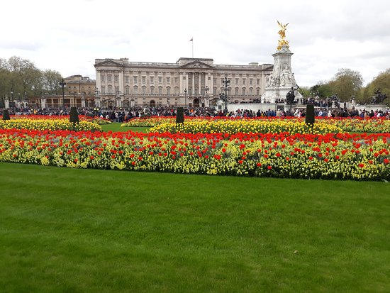 Queen Victoria Memorial: Tulips in full bloom.