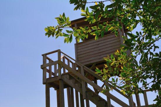 Estarreja, Portugal: No meio do percurso de Jardim existe também uma torre de observação.