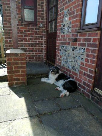 Maiden Newton, UK: IMG_20180517_112855_large.jpg