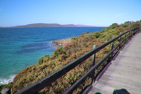 Ellen Cove Boardwalk