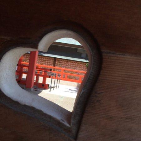 Кобе, Япония: photo2.jpg
