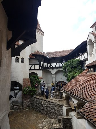 Zdjęcie Transylvania and Dracula's Castle Full Day Tour from Bucharest