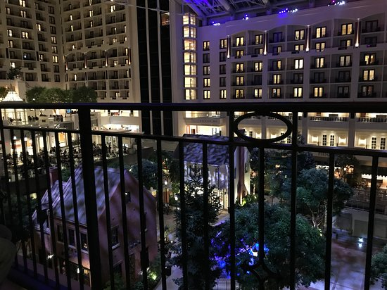 Gaylord National Resort & Convention Center Φωτογραφία