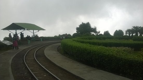 Batasia Loop: toy train track, sitting place and the garden view