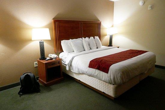 McAlester, OK: KIngbed room