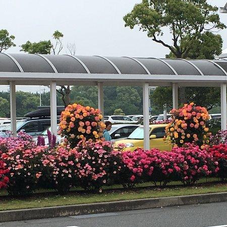 Yamaguchi Ube Airport Rose Garden