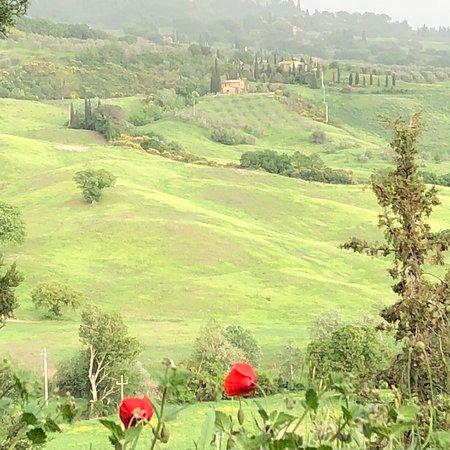 Agriturismo Cretaiole di Luciano Moricciani: photo2.jpg