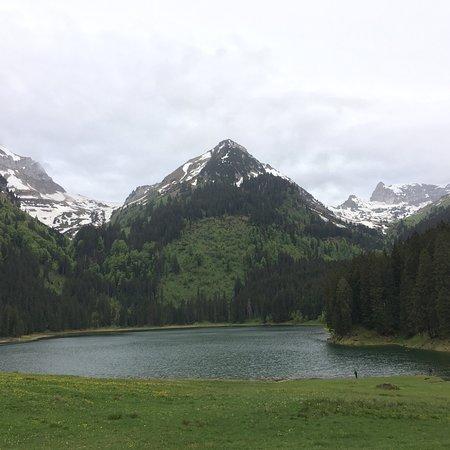Grabs, Schweiz: photo1.jpg