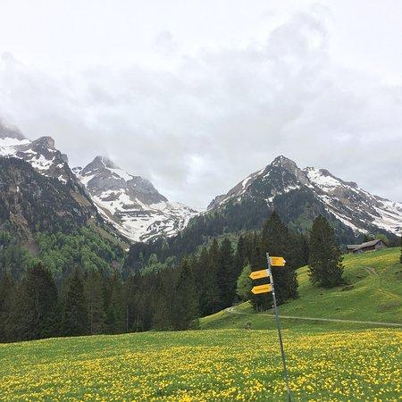 Grabs, Schweiz: photo2.jpg