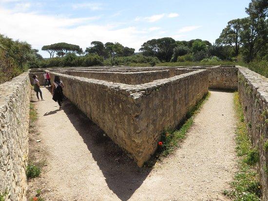 Доннафугата, Италия: scorcio del labirinto