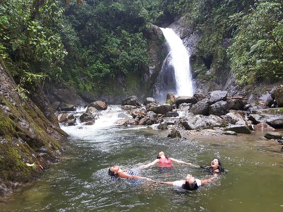 Catarata Gallito de las Rocas | Satipo - Junín Turismo y Viajes | Y tú que planes? | Selva Centr