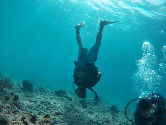 Rebel Diving Curacao: Our SSI Buoyancy speciliazation - now we're able to dive upside down!