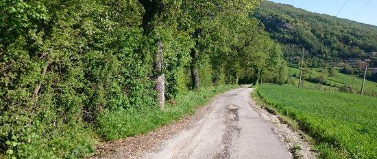 Novafeltria, إيطاليا: B&B Ca' Del Gallo - Strada per raggiungere il B&B