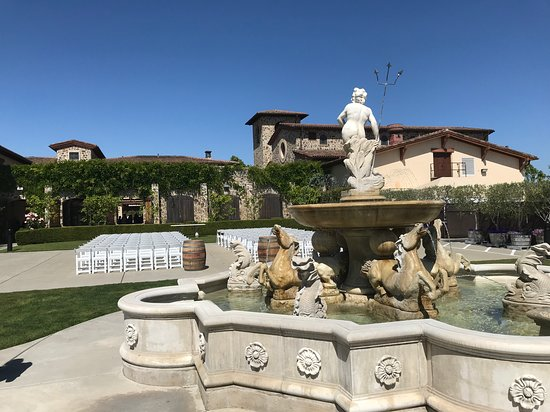 Napa Valley Wine Country Tours Photo
