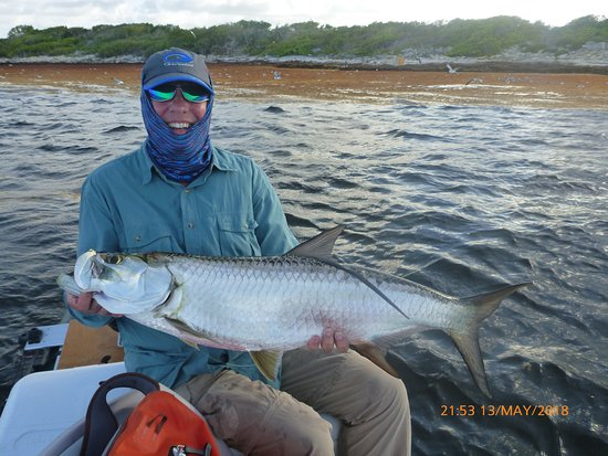 Cades Bay, Antigua: Tarpon caught with captain nick