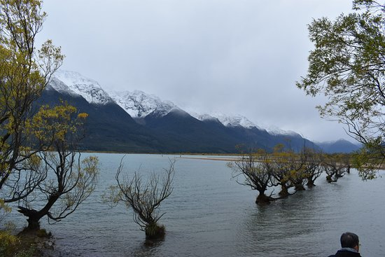 Alpine Adventures: Out around Glenorchy, famous spot for pictures.