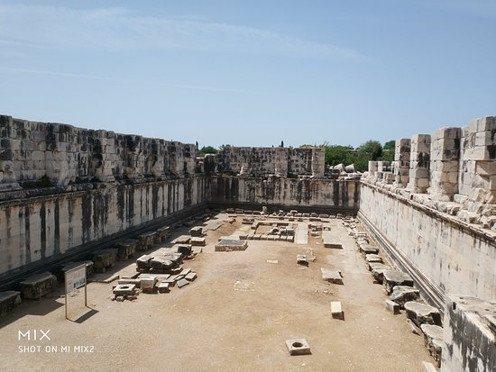 Temple of Apollo: IMG_20180503_123931_1_large.jpg
