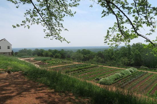 Thomas Jeffersonu0027s Monticello: Monticellou0027s Vegetable Gardens