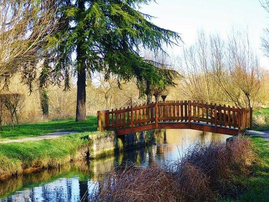 Le Parc de la Bouvaque: bouvaque-pont