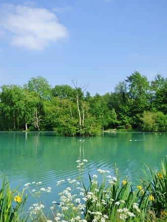 Le Parc de la Bouvaque: bouvaque-etang