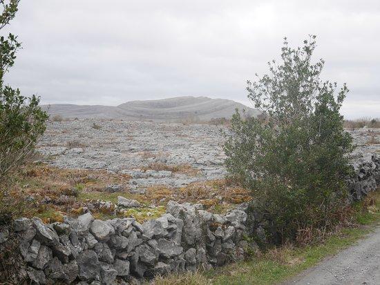 Corofin, Irlanda: The Burren National Park