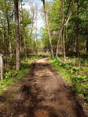 Gordon Bubolz Nature Preserve Appleton All You Need To