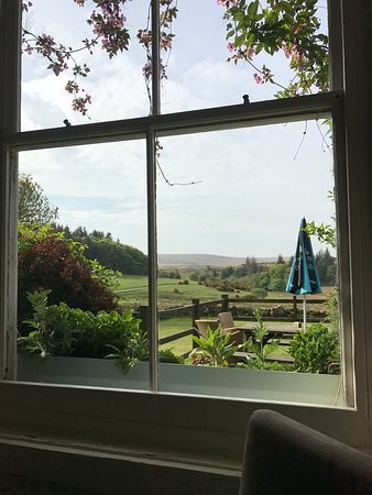 Prince Hall Country House: Looking out the back of the hotel from breakfast table