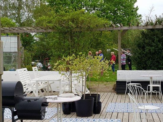 Kaseberga, Szwecja: Trädgården med Qigonggrupp