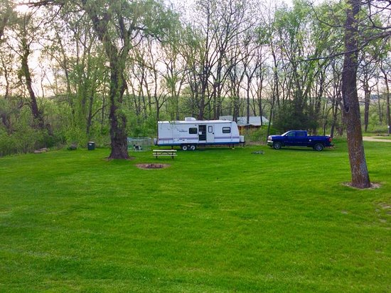 Silver Springs Campsites: My Tree site