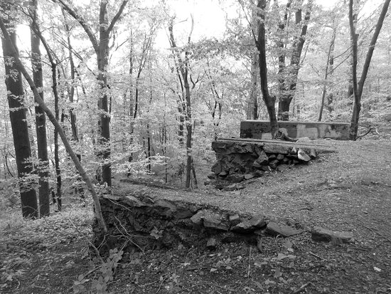 White Plains, KY: Ruins of the Stone Cutting Shed
